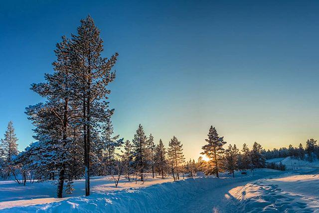 Scenes from Lapland