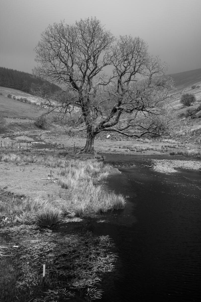 Brecon Beacons landscape 1