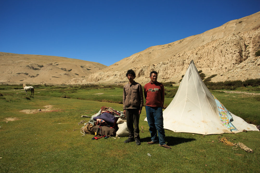 Nomadic Tribesmen of Ladakh who keep moving to where the pastures are green.