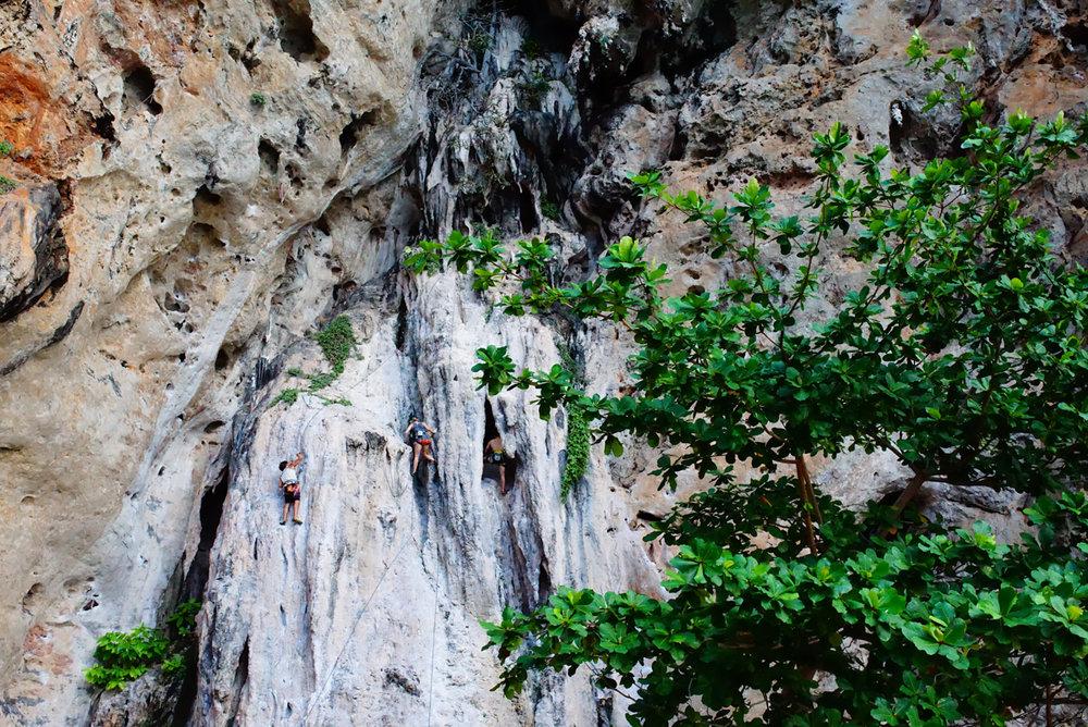 Rock Climbing at Krabi