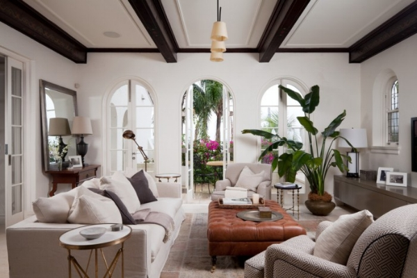 birds-of-paradise-plant-living-room