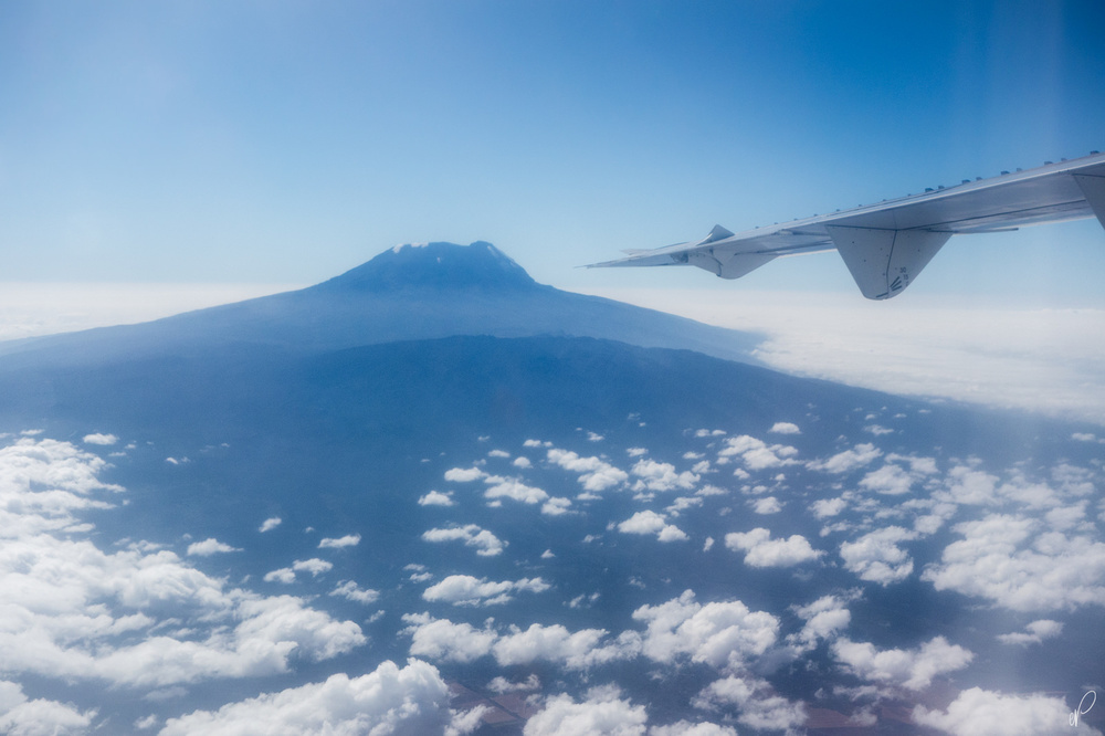 Kilimanjaro rising well above the Clouds