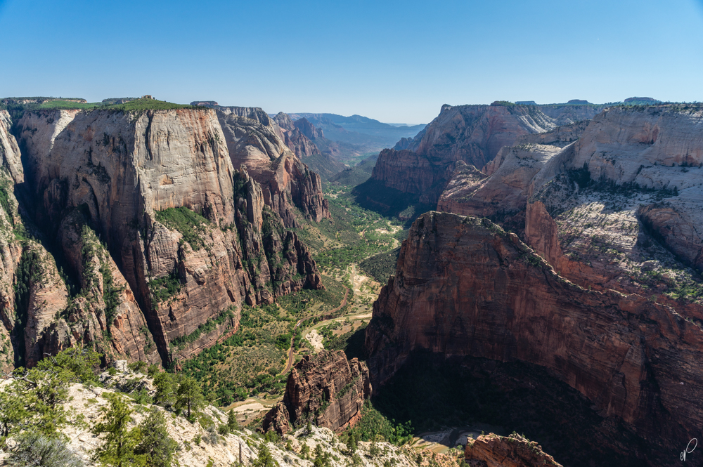All that effort for this view; the Angel's Landing ridgeline can be seen on the bottom right.