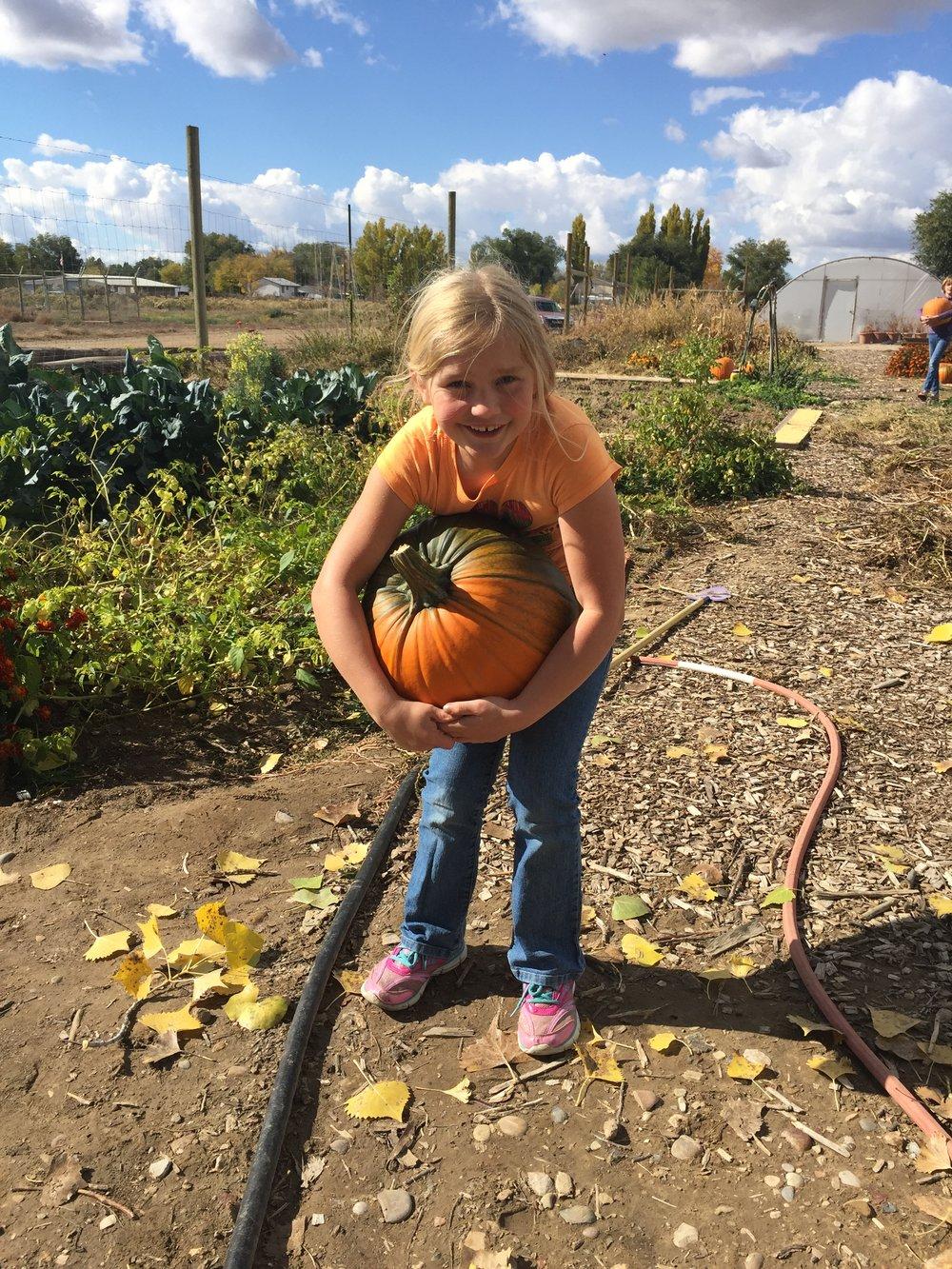 Pumpkins 2015-10-23 058.JPG