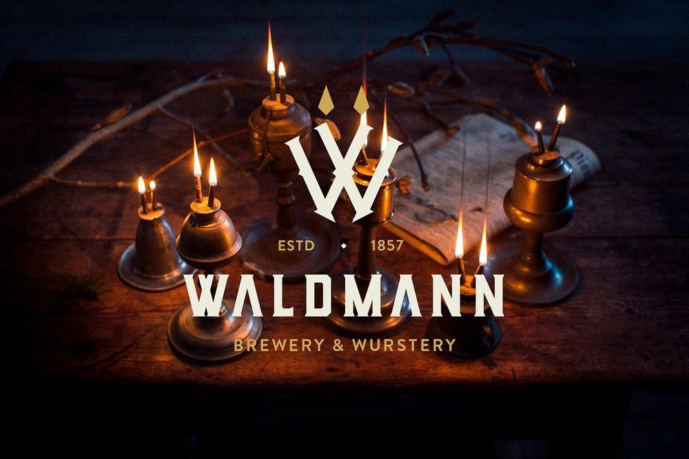 Waldmann Logo 2.jpg