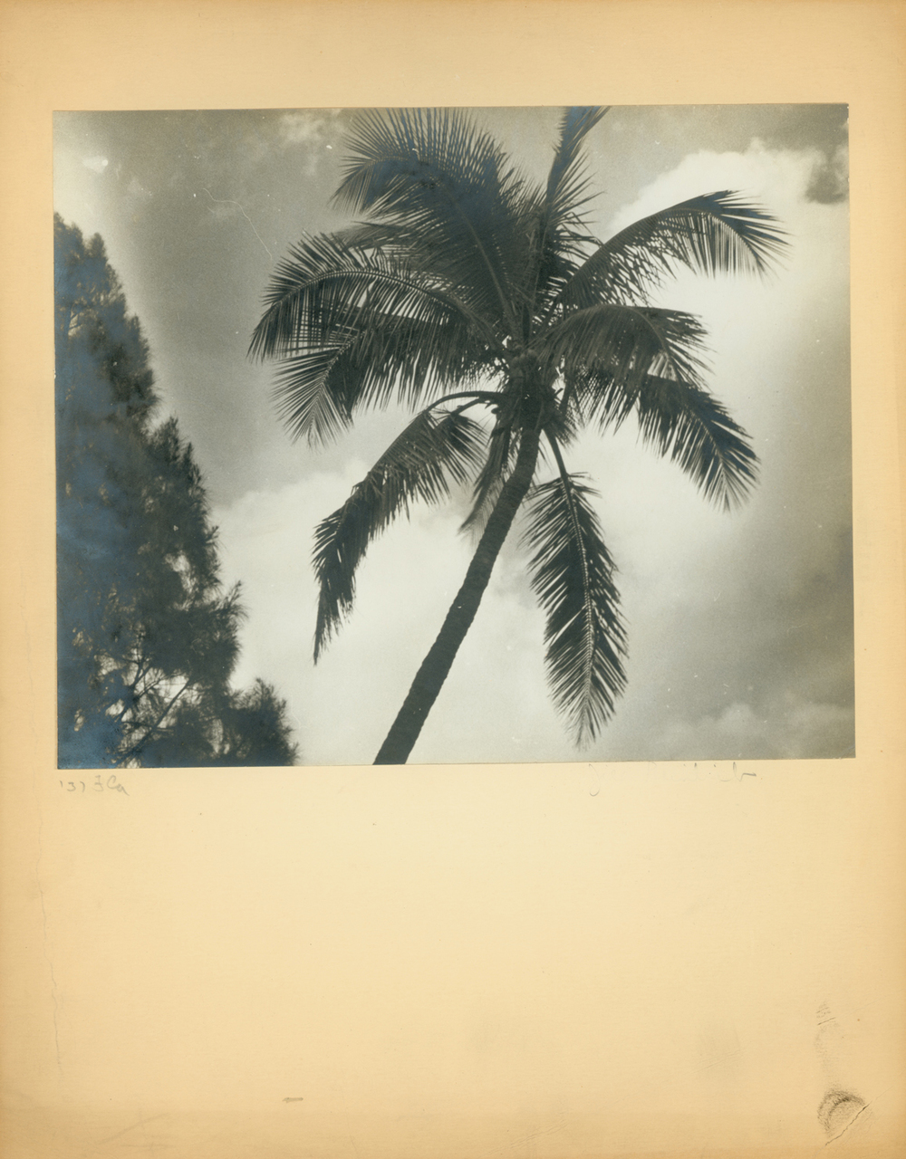 Hialeah, Florida 1937
