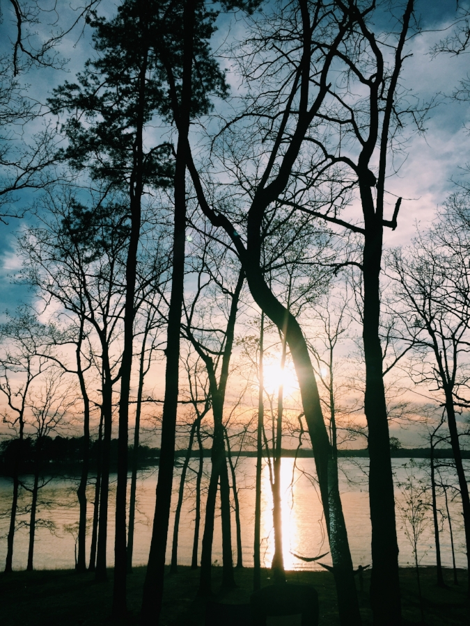 lake lanier old federal campground at sunset, sunset coming through trees on the lake, georgia summer