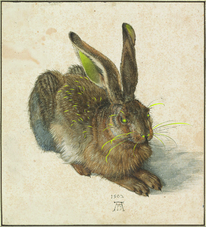 Durer_SaveTheDateRadioactiveRabbit.jpg