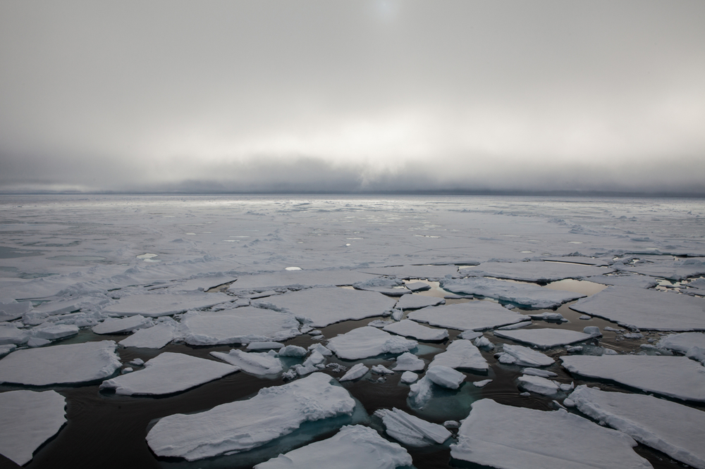 The sea ice of the Arctic Ocean