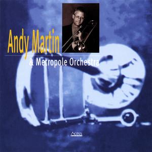 AndyMartin_andthemetropoleorchestra.jpeg