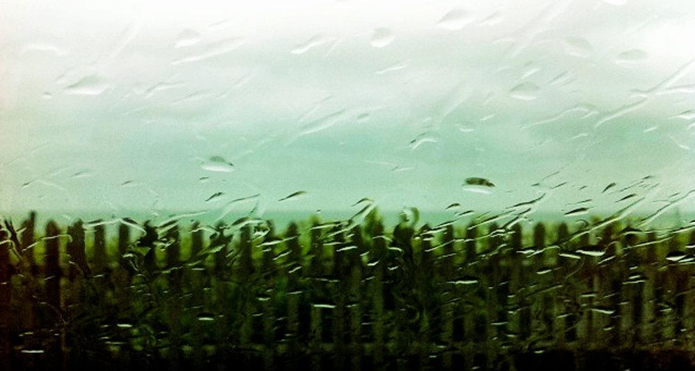 DNW-landscape.jpg