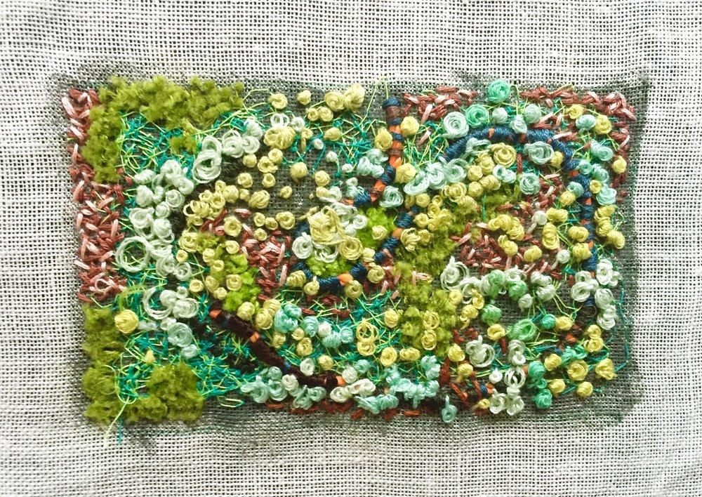 lichen cover.jpg