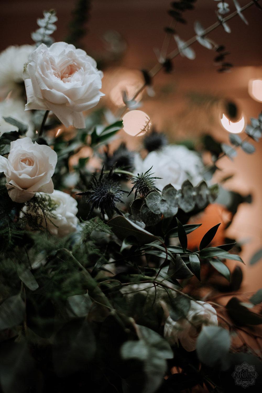 Arius_Photography_2017_November_03_16.54.35.jpg