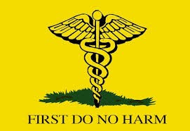 "[image description: an image of the symbol of the medical profession: two snakes wrapped up a staff with two wings extended at the top. The background is yellow and there is an image of green grass at the bottom. ""FIRST DO NO HARM"" is typed on the bottom. Image found on Google Images]"