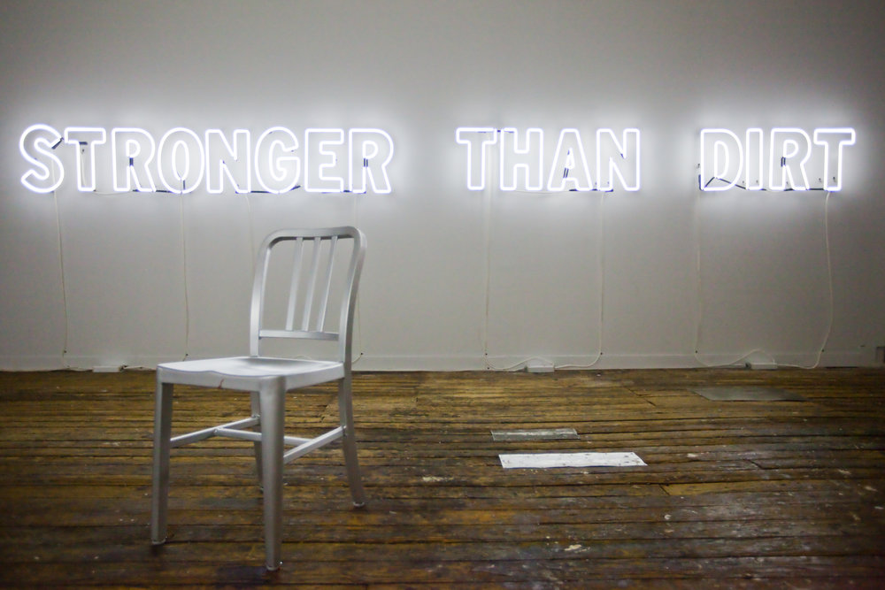 """Mary Ellen Carroll, """"Stronger Than Dirt"""" (2010). Installation shot at Third Streaming Gallery, 2010. Image credit Whitney Brown."""
