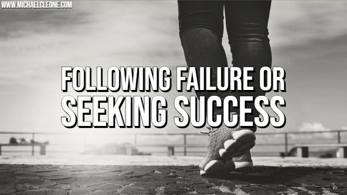 Following Failure or Seeking Success.jpg