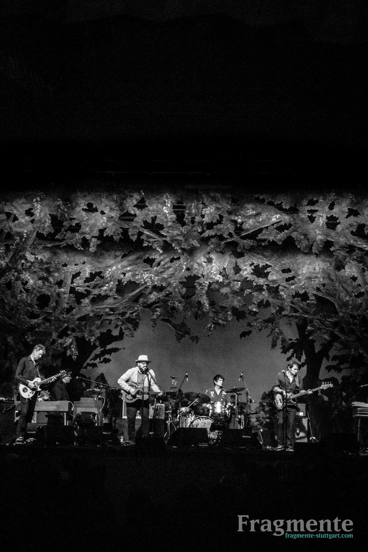 Wilco-0285.jpg