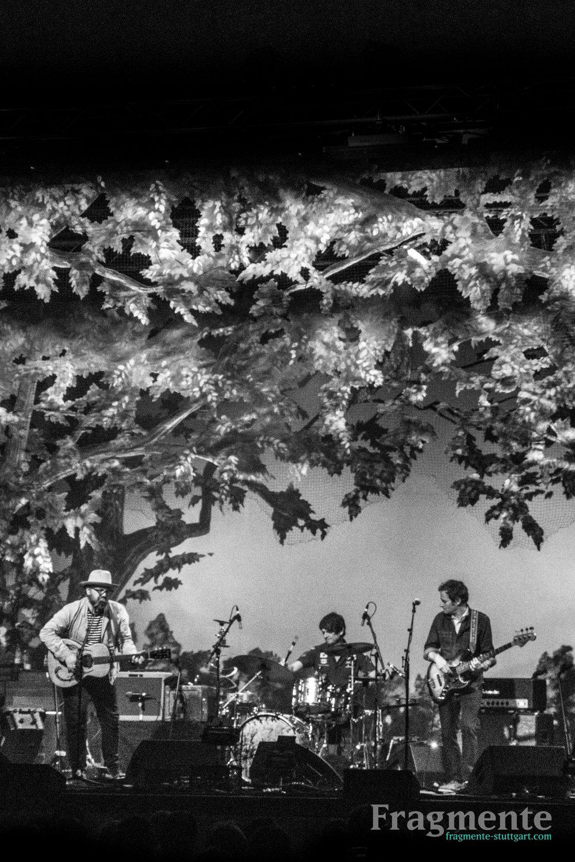 Wilco-0350.jpg