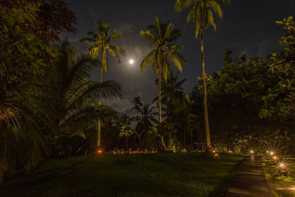 Bali-Purnati-1.jpg