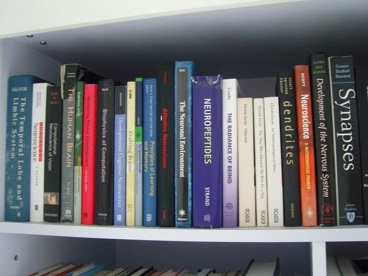 books .jpeg