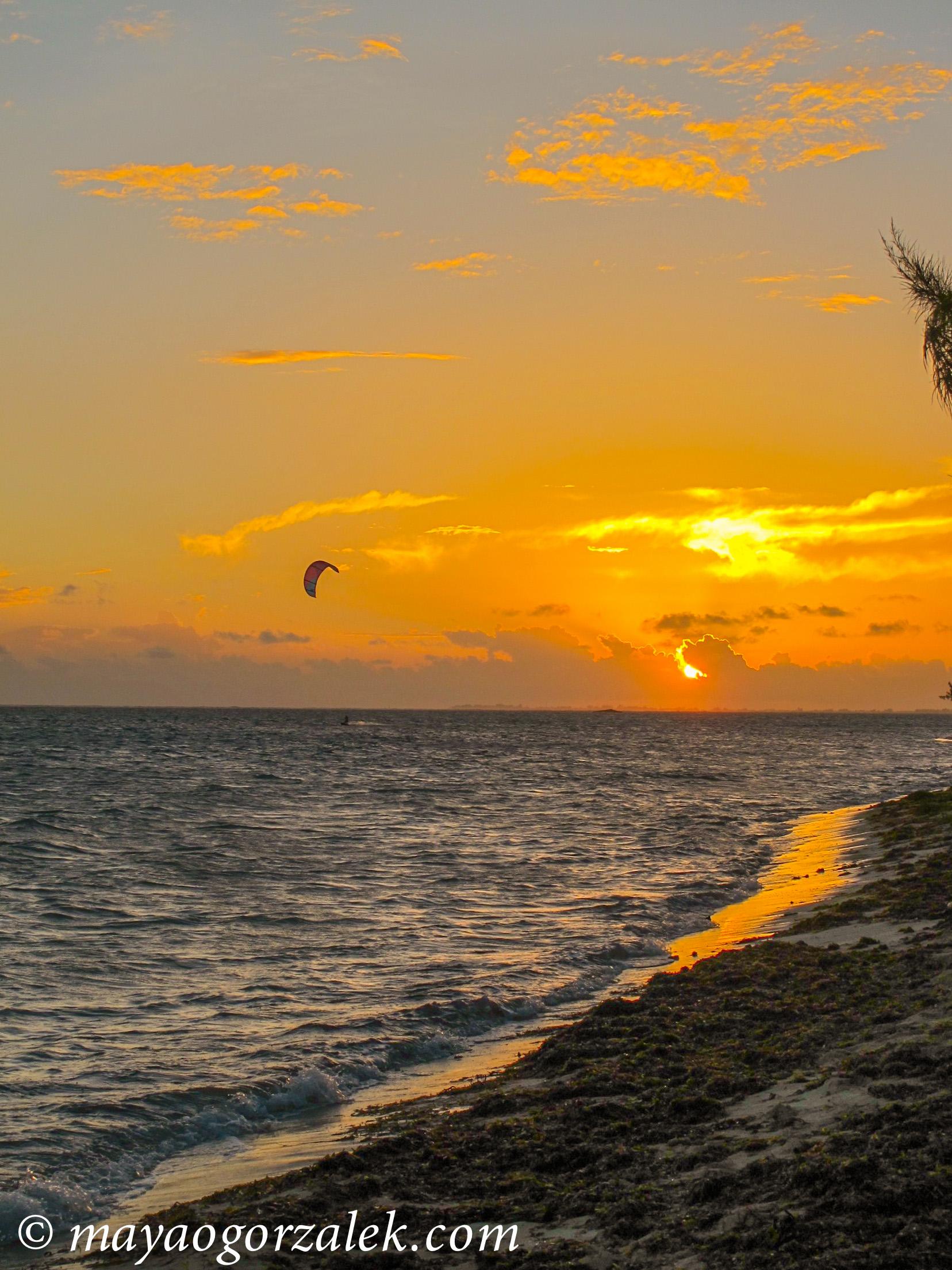 sunset kite