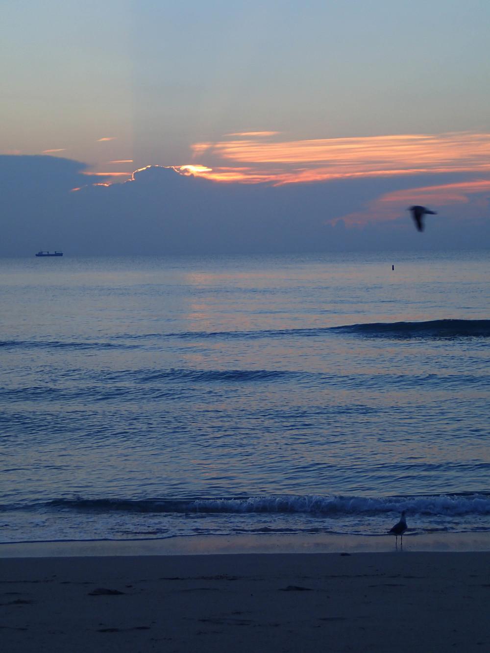 sunrise south beach 3