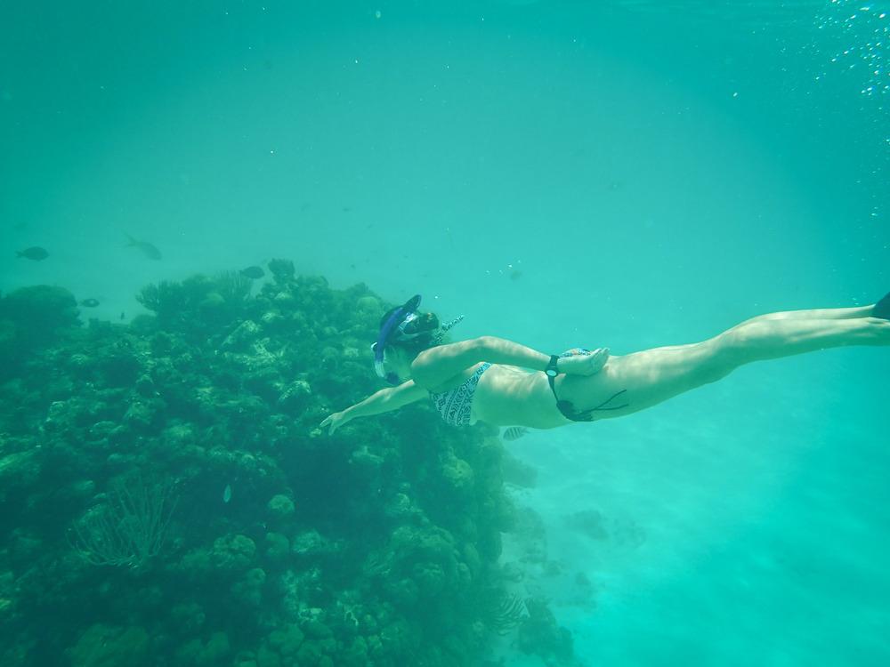 snorkelling cayman