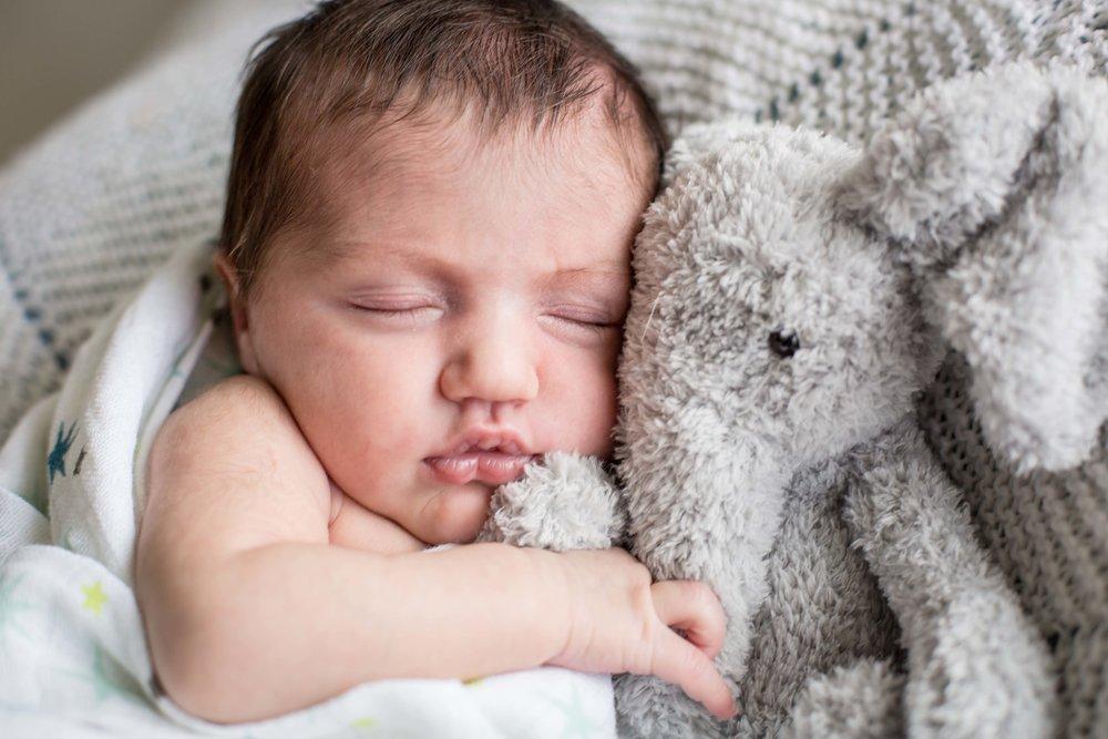 baby photography amelia