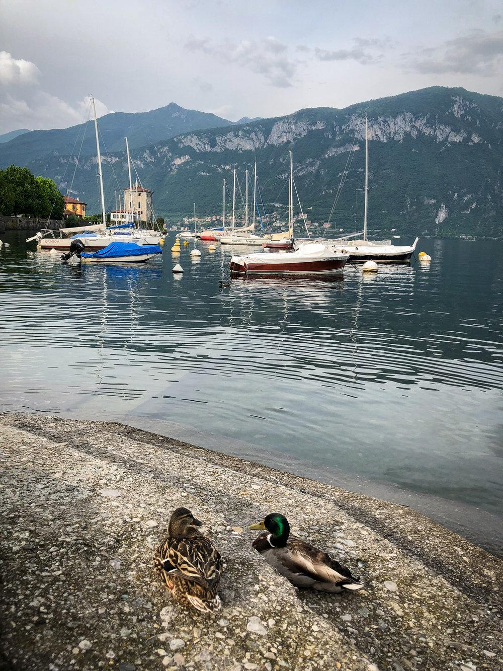 Pescallo, Bellagio, Lake Como www.caribbeansnowflake.com.jpg