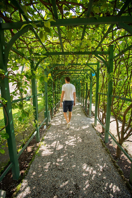 Bottanical gardens at Villa Carlotta - www.caribbeansnowflake.com.jpg