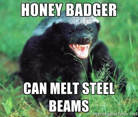 Badger 007.jpg