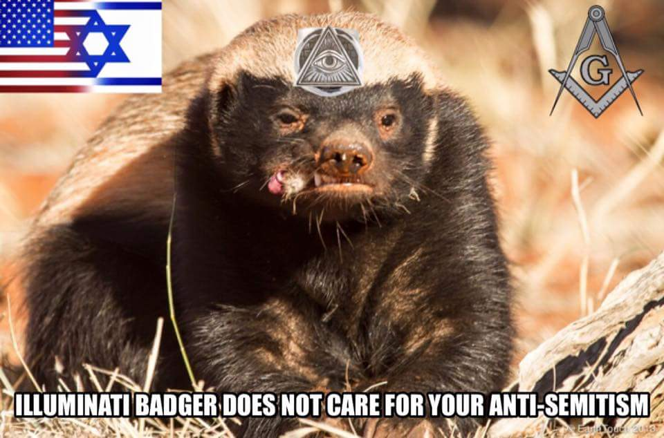 Badger 010.jpg