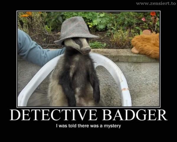 Badger 031.jpg