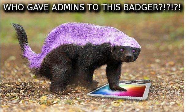 Badger 033.jpg