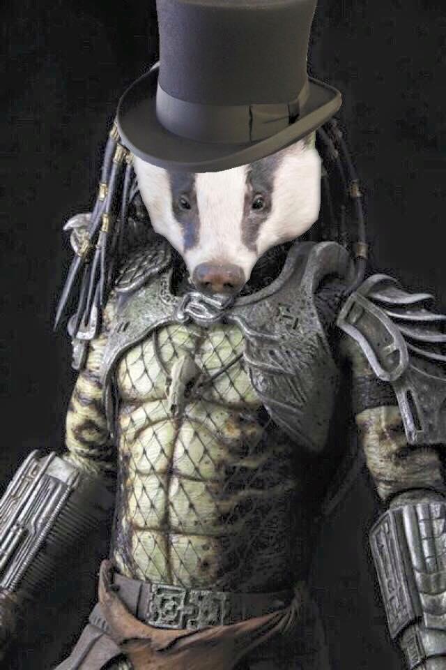 Badger 043.jpg