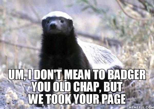 Badger 051.jpg