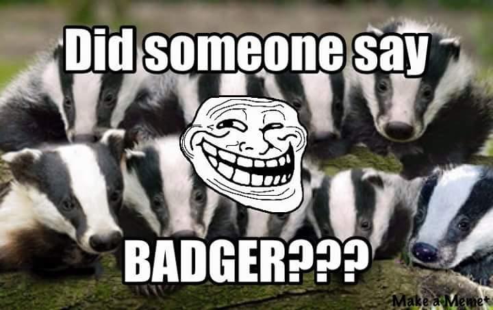 Badger 058.jpg