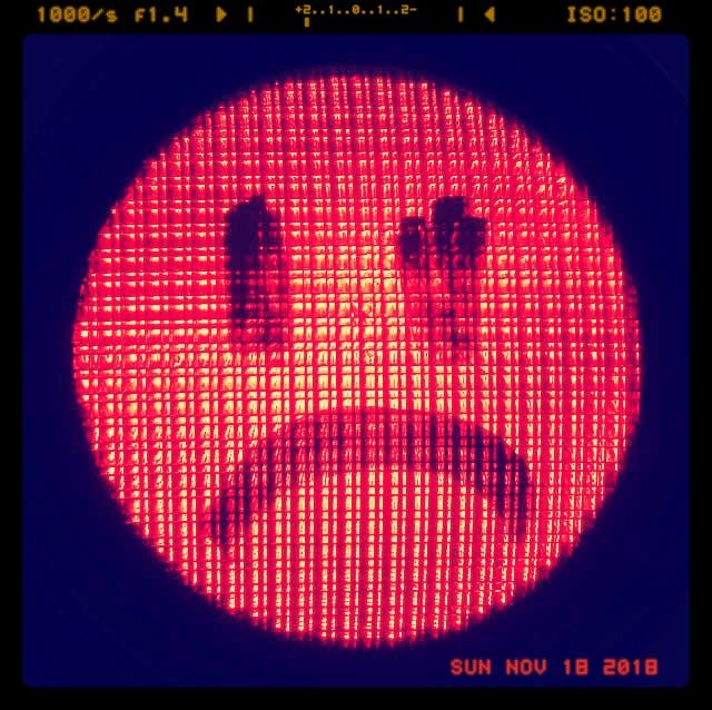sad red light.jpg