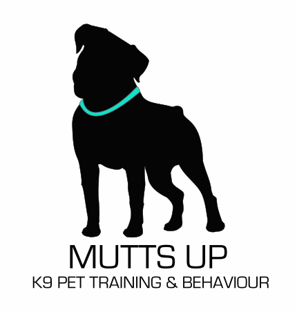 MUTTS UP | Dog Training Services | Port Moody + Coquitlam + Port Coquitlam + North Burnaby