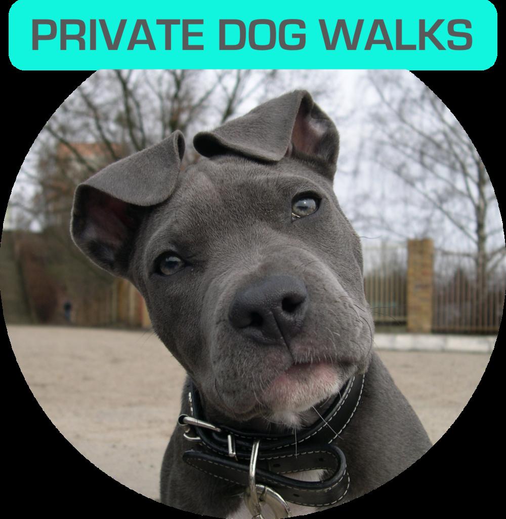 PrivateWalks.png