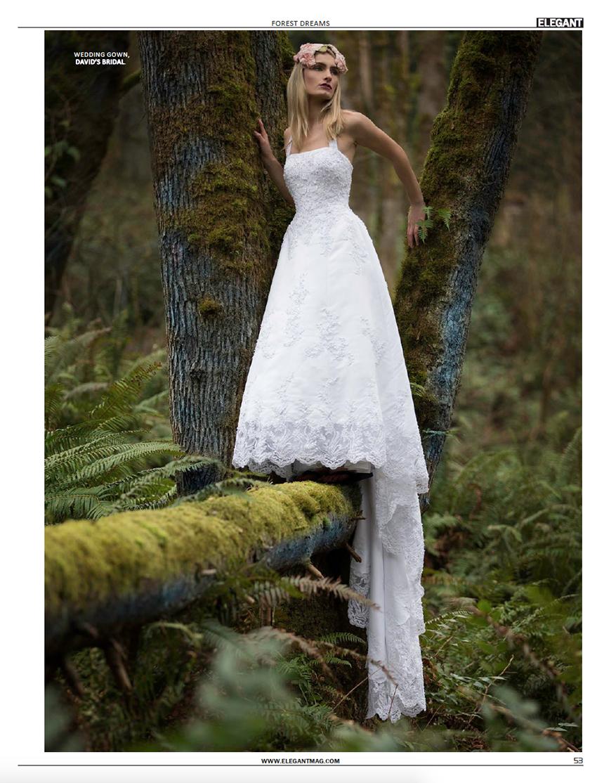 201402-Elegant-ForestDreams-53.jpg
