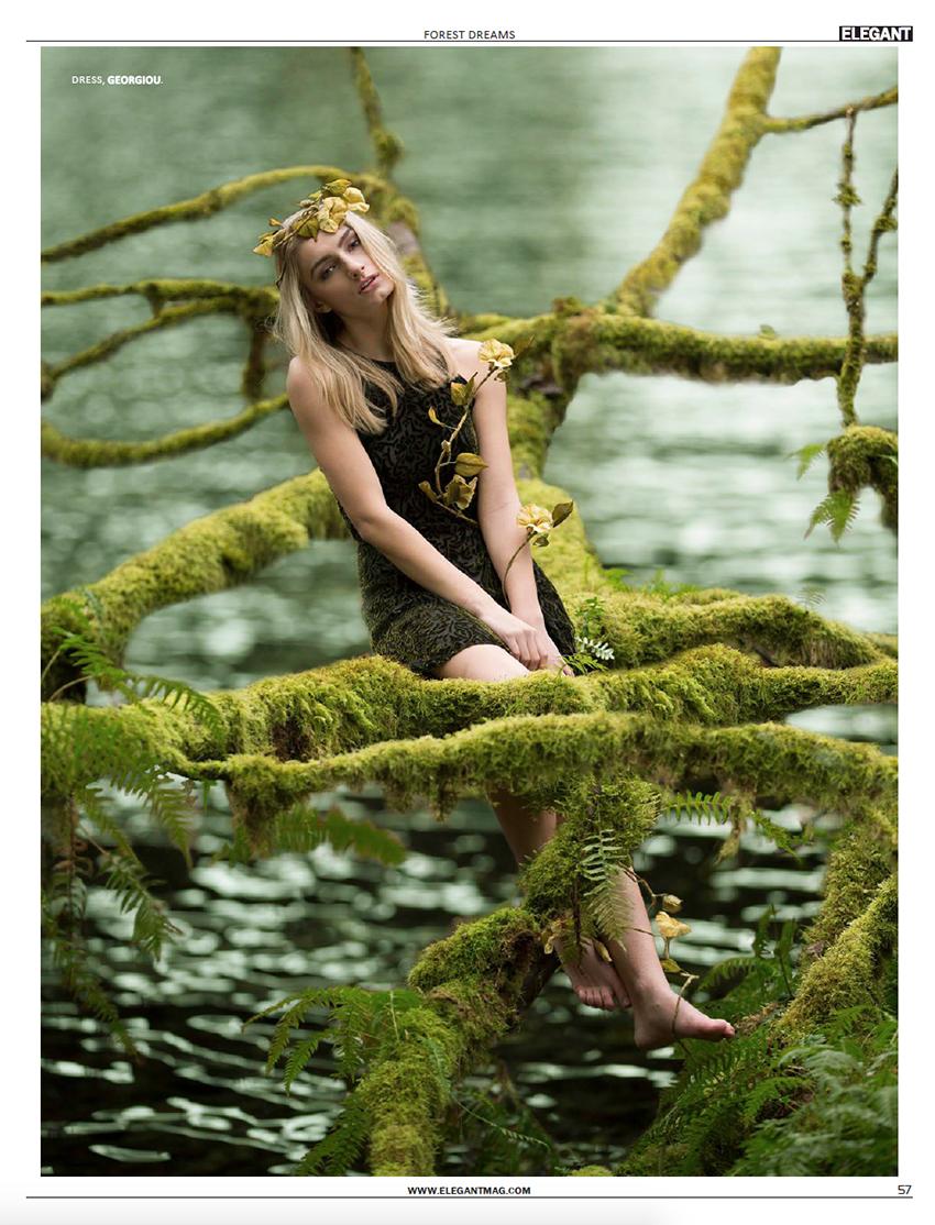 201402-Elegant-ForestDreams-57.jpg