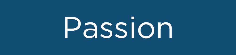 SDC_Passion.jpg