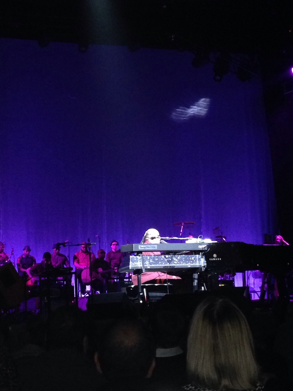 I feel so blessed to see this living legend perform at least once a year. Stevie, We love you!