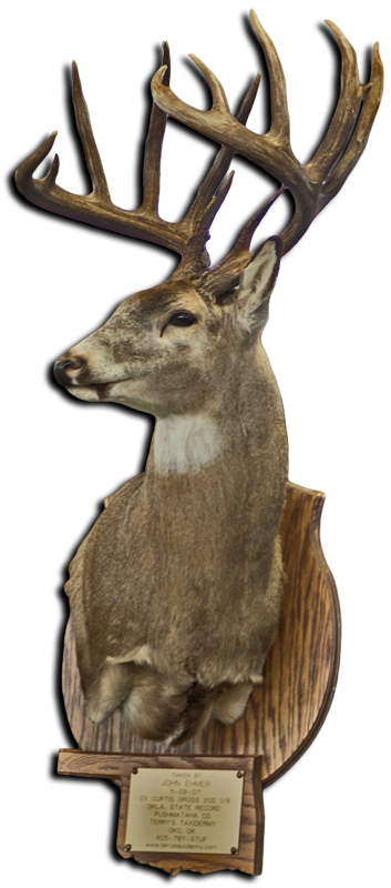 State-Record-Buck.png