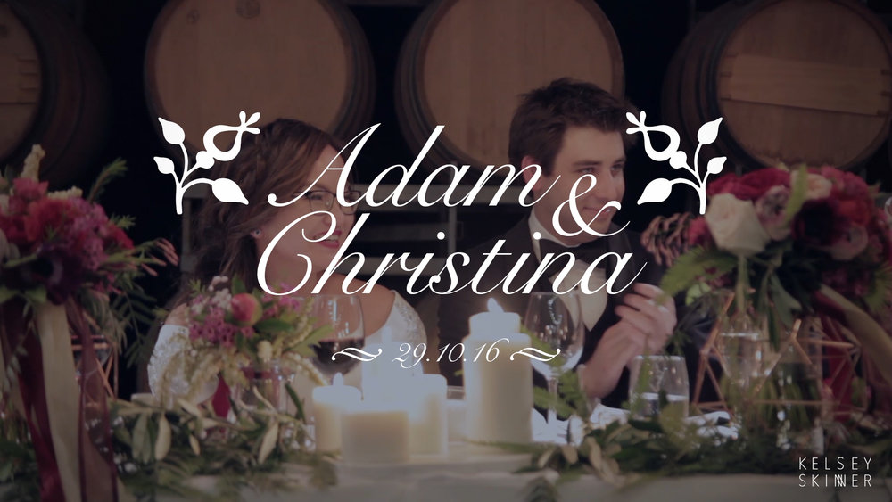 Adam and Christina Wedding Highlights