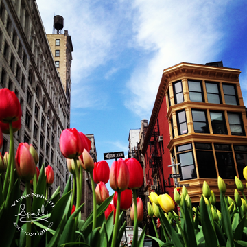 Springtime in New York City. Broadway and Union Square.