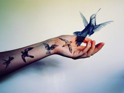 bird-birds-cute-fly-humming-bird-Favim.com-137796.jpg