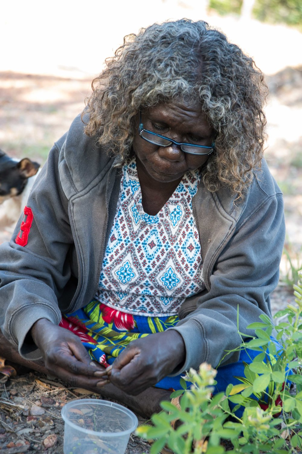 Leila Nimbadja sorting seeds. Photo David Leece.jpg