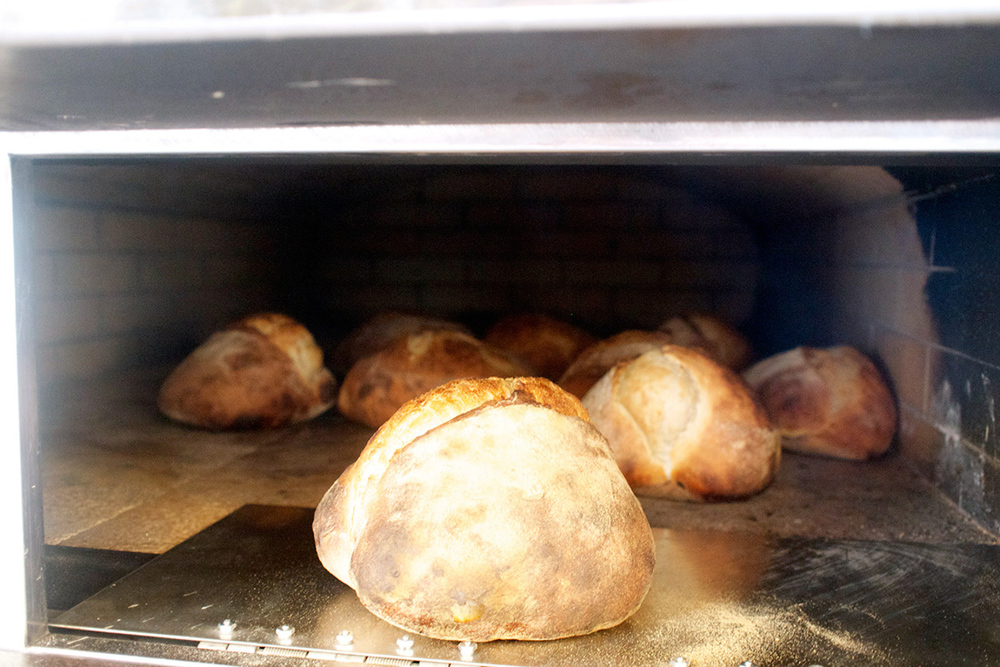 bread-bread.jpg